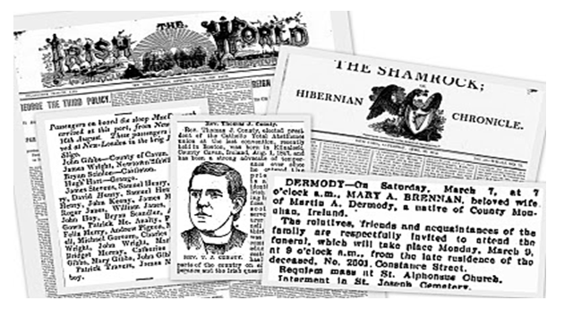 Image of Irish Newspapers