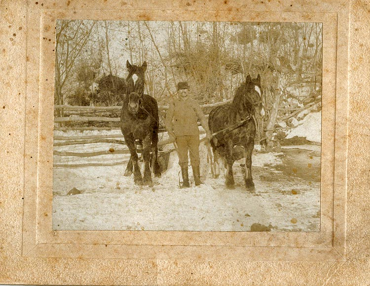 Photograph of Duncan McArthur with Horses